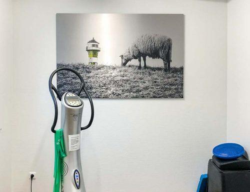 Wandbilder für Fitness-Studio